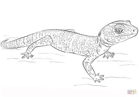 Leopard Gecko Coloring Pages lozzie