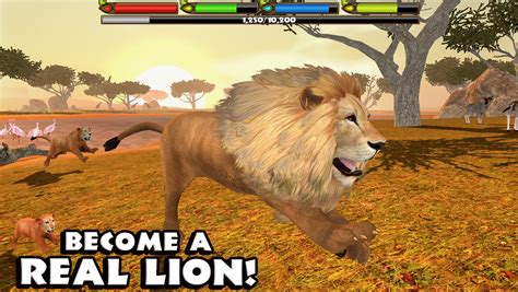 Lion Games Play Lion Online Games