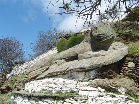 Lion Simple English Wikipedia the free encyclopedia