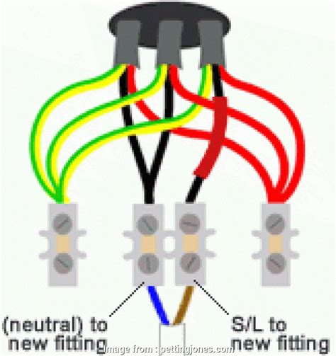 outside light pir wiring diagram images wiring harness diagram looped in lighting wiring the ceiling rose practical diy