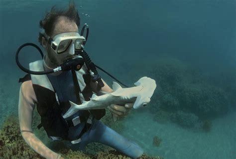 Marine Biologist About