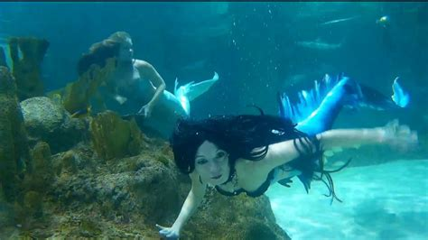 Meet the mermaids trying to defend the coral reefs from