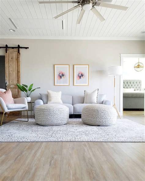 Modern Sherwin Williams Agreeable Gray Living Room