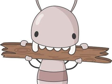 Mulch by the house termites fact or fiction GardenWeb