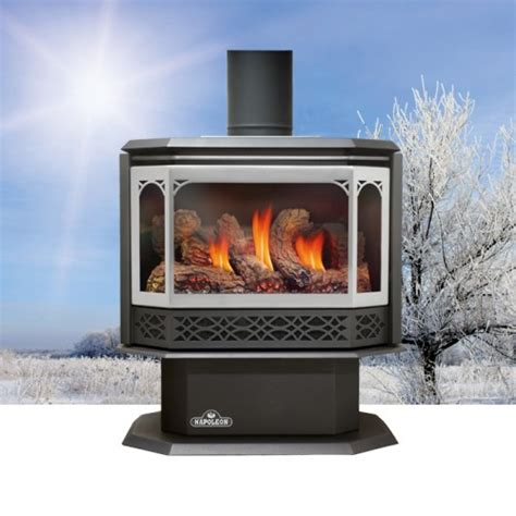 Napoleon GDS50 Havelock Direct Vent B Vent Gas Stove