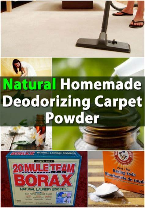 Natural Homemade Deodorizing Carpet Powder DIY Crafts