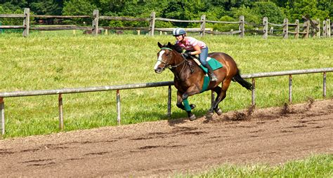 Natural Mulch Landscape And Recreation Surfaces Zeager