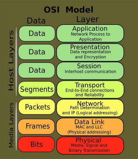 Networking Quiz OSI Model Kevins Workbench