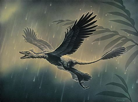 New four winged feathered dinosaur creation