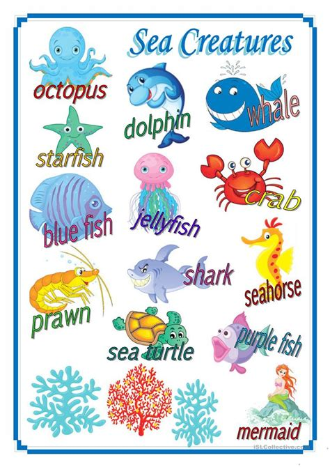 Ocean Sea Life Primary Teaching Resources and Printables