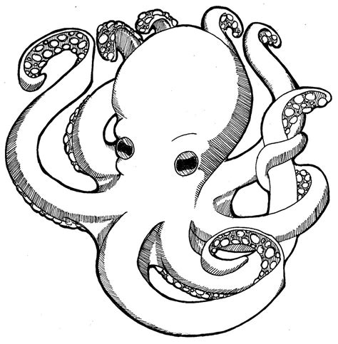 Octopus Coloring Pages Free Coloring Pages for Kids