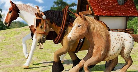 Online Horse Games For Her Games