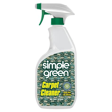 Organic Carpet Cleaning NYC Green Upholstery Cleaning