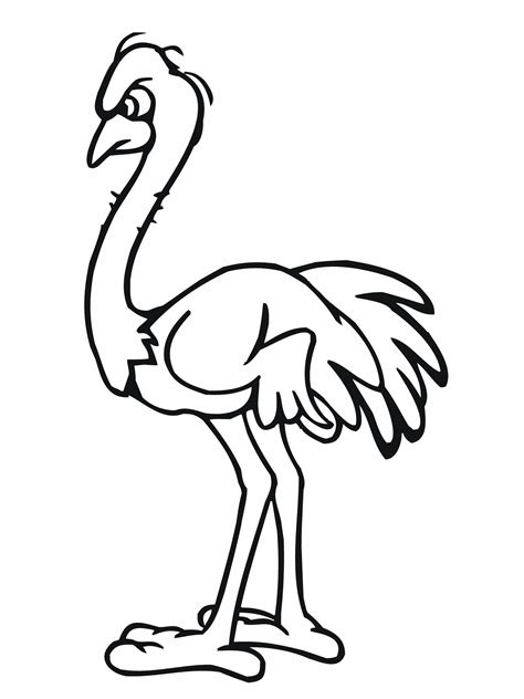 Ostrich Coloring Pages
