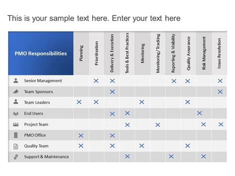 PMO Roles and Responsibilities Define PMO cupe