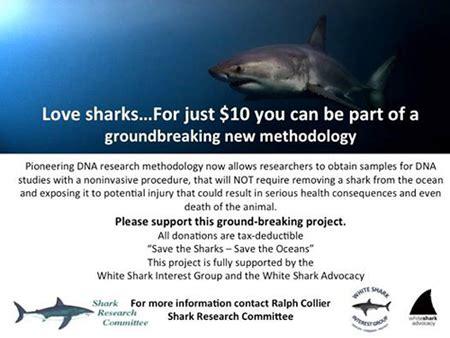 Pacific Coast Shark News Shark Research Committee