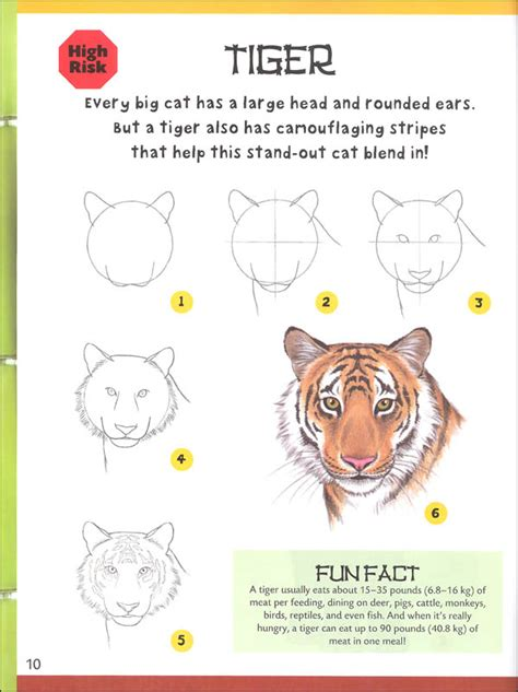 Page 5 How to draw animals step by step with our FREE