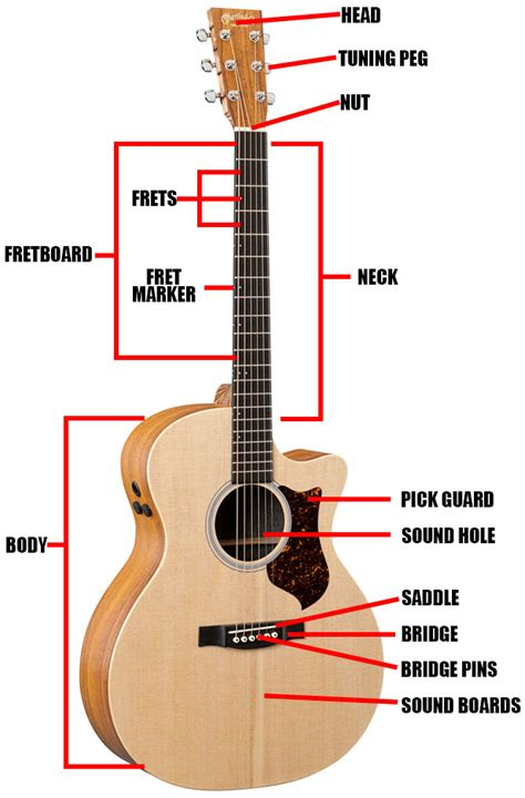 diagram of a guitar diagram image wiring diagram guitar part diagram images on diagram of a guitar