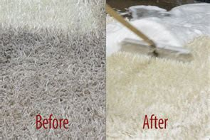 Pearland Carpet Cleaning Local Carpet Cleaning Company in