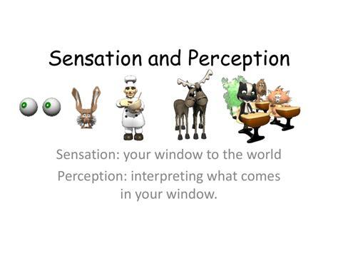 Perception AP Psychology Community