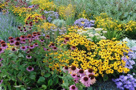 Perennials Gardening and Growing with The Garden Helper