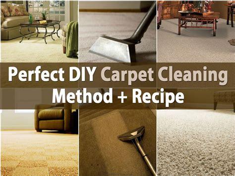 Perfect DIY Carpet Cleaning Method Recipe DIY Crafts