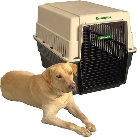 Pets Choice Small Plastic Dog Kennel BIG W