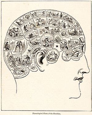 Phrenology Wikipedia