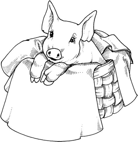 Pig in a basket Pigs Coloring pages