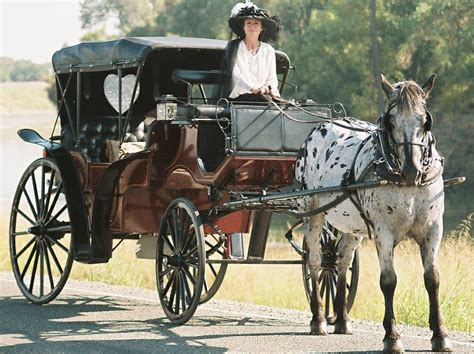 Plantation Carriage Company horse drawn carriage rides in