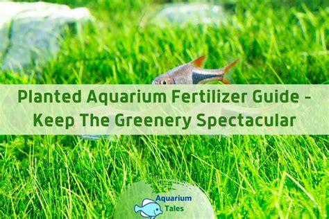 Planted Aquarium Fertilizer How To Articles
