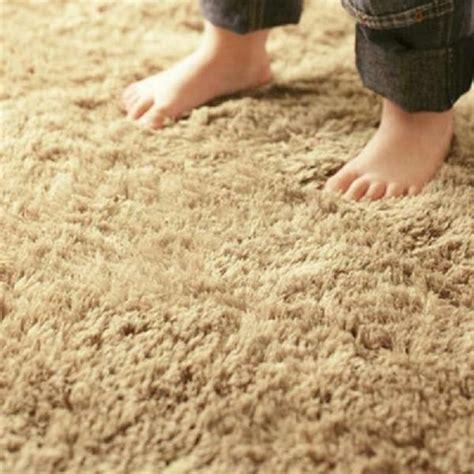 Plush Carpet Soft Durable Carpeting Cardoza Flooring