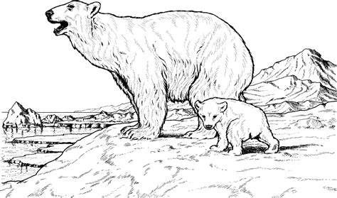 Polar Bear with Baby coloring page Free Printable
