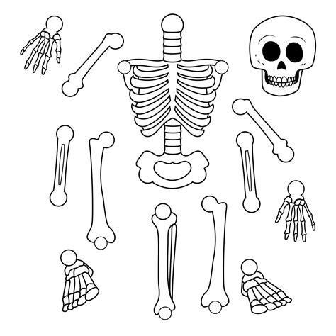 Printable Skeleton Template PaperZip