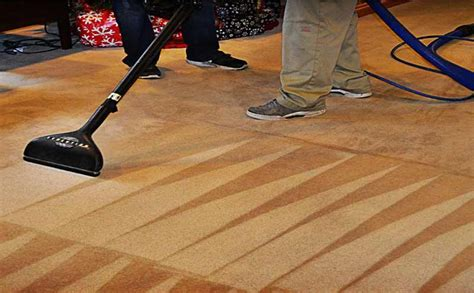 Professional Steam Cleaning Carpet Cleaners Pearland TX