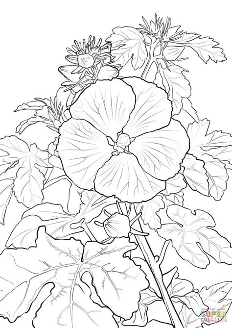 Pua Aloalo or Hawaiian Hibiscus coloring page Free