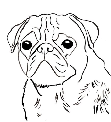 Pug Coloring Page Free Pug Online Coloring