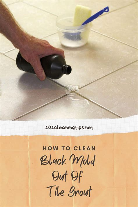Removing Tile Floor Mold Mildew Cleaning Grout