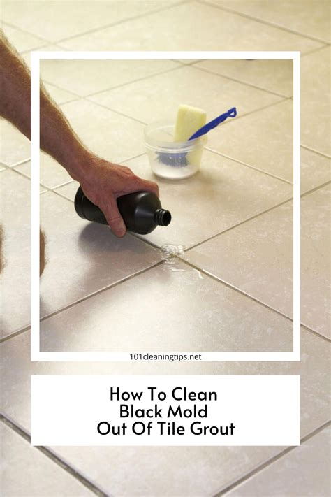 Removing Tile Floor Mold Mildew Grout Cleaning