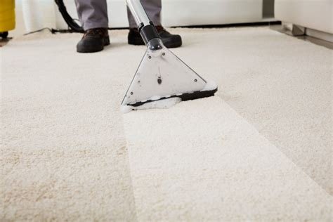 Residential Commercial Carpet Cleaning in Michigan L N
