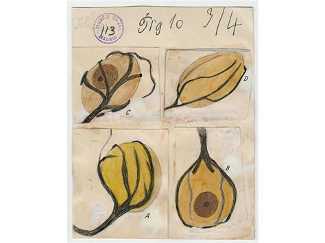 Revel in These Wondrous Drawings by the Father of