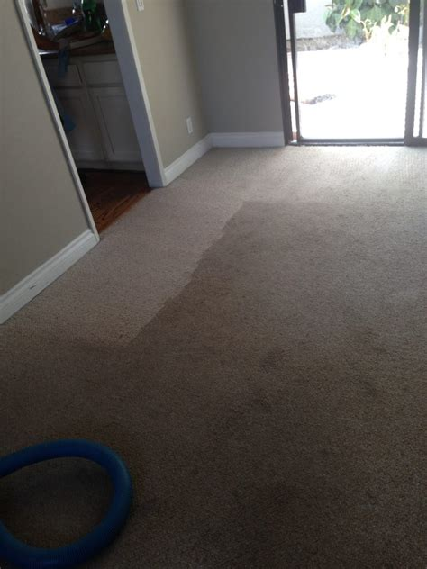 Right Way Carpet Care Pacific Palisades Carpet Cleaning