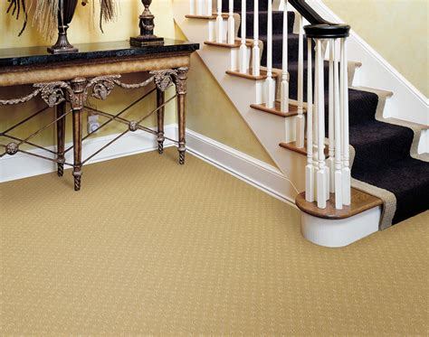 San Tan Valley Carpet Cleaners 480 405 1334 Arizona