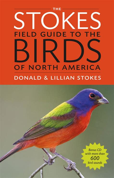 Search Our Bird Guide All About Birds Guide