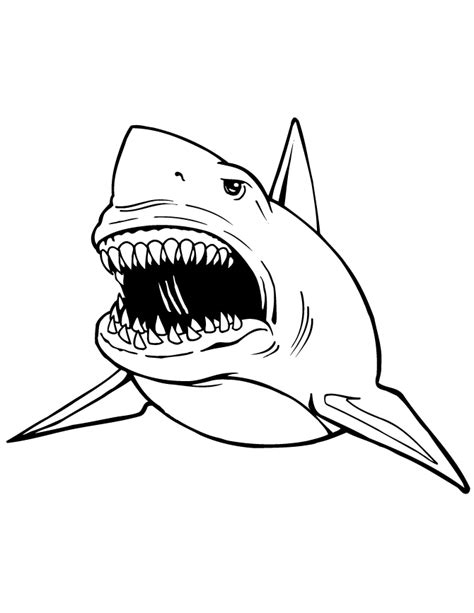 Sharks coloring pages Free Coloring Pages