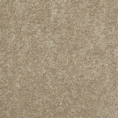 Shop Shaw Stock Sand Textured Indoor Carpet at Lowes