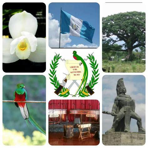 Simbolo FAO image 12