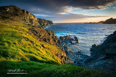 Site Map The Canadian Nature Photographer