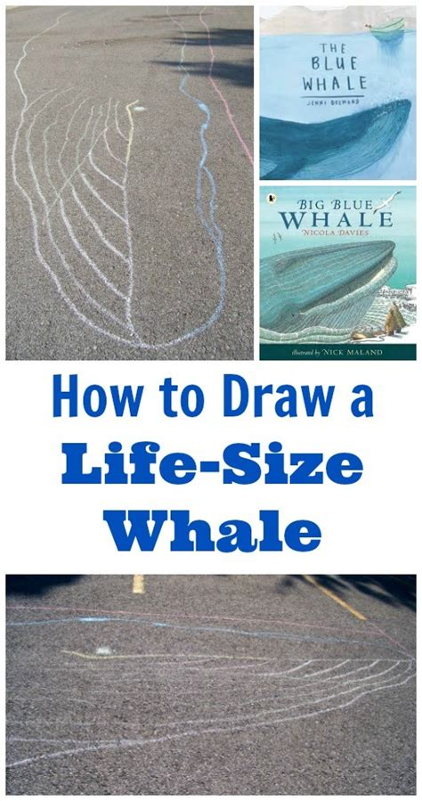 Size of a Blue Whale STEM Activity for Kids Edventures