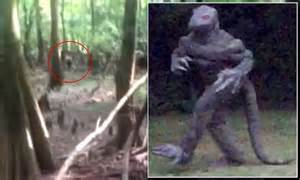South Carolina s Lizard Man may have been captured in new